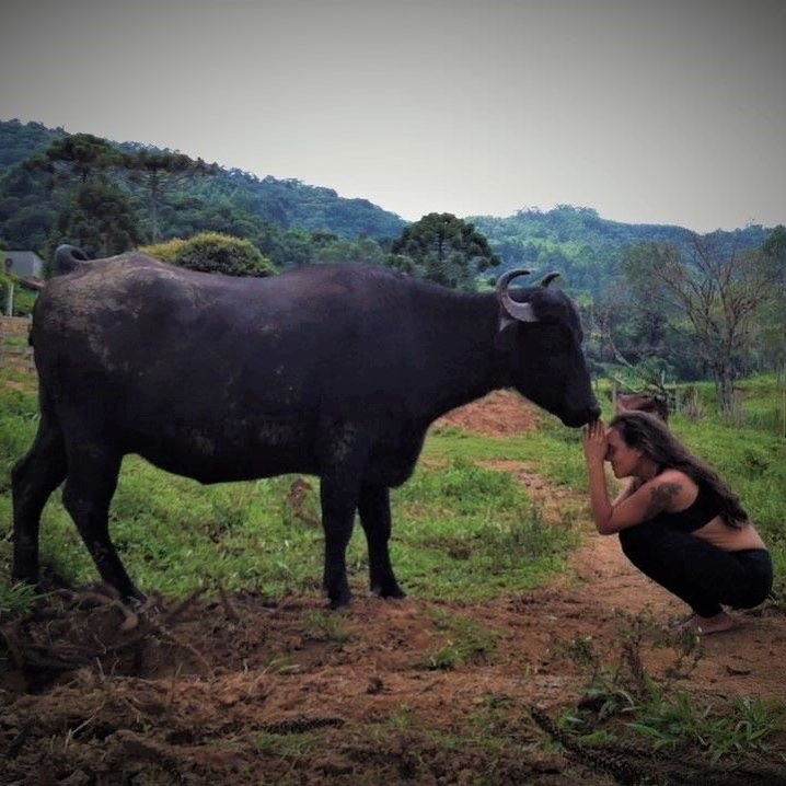 Buddhismo, Vegetarianismo e Veganismo
